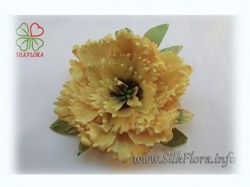 pion-drevovidnyi_silkflora-info