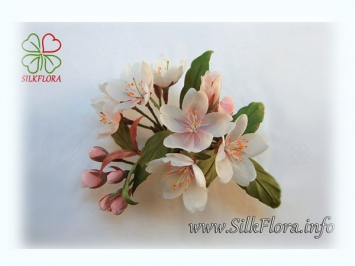 sakura_silkflora-info